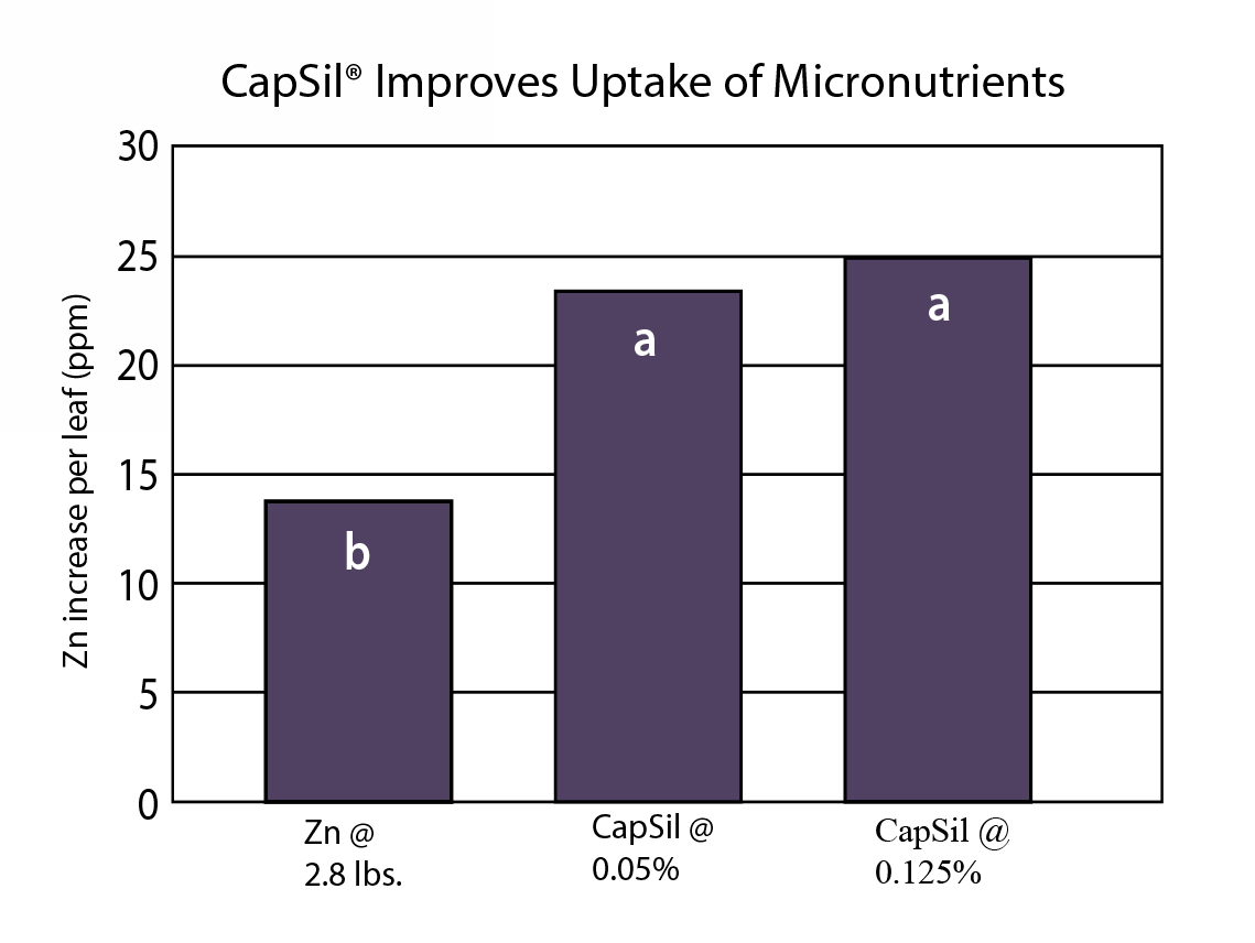 Zn increase per leaf graph. CapSil improves Uptake of Micronutrients