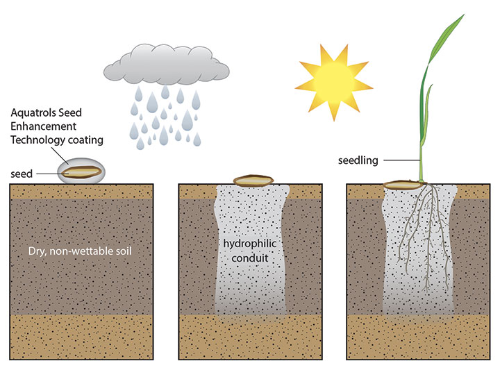 How Aquatrols Seeds Enhancement Technology works graphic